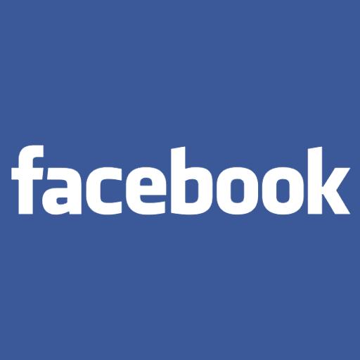 Facebook 4204003